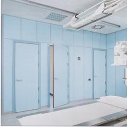 Portes plombées pivotantes, pb 2 mm (huisserie 100 x 70 mm)