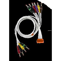 Câble patient pour ECG HD+ Cardioline (à fiches 4mm ou à pression)