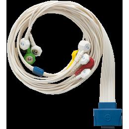 Câble patient 10 brins pour Holter ECG Cardioline Walk400h