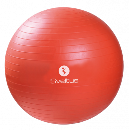 Gymball Sveltus 55 cm - orange
