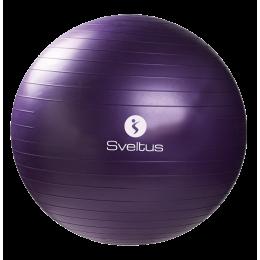 Gymball Sveltus 75 cm - parme